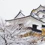 天守雪景2