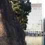 和田倉濠と大手町