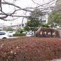 石碑(と市役所)