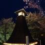 夜桜と住吉灯台