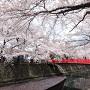 春の奥の細道結びの地其の参