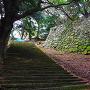 三丸の高石垣と石段
