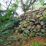 本丸北方の石垣
