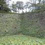 雄大な石垣