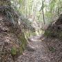 山城への登城路の切通し