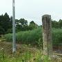 本丸跡(道路側)に建つ石碑