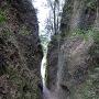 清色城の代名詞の様な堀
