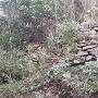梶谷城 登城路沿い 石垣①
