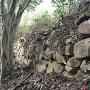 石垣(西櫓台の南下)