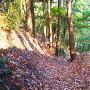 竪堀と堅土塁◆曲輪Ⅲ東側