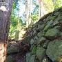 二ノ曲輪北斜面の石垣