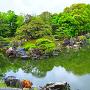 春雨の「二の丸庭園」⑨