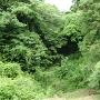 本丸土橋の空堀
