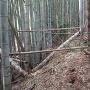 三城城 土橋(土塁)①