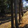 堀の横を通る線路。少し待ってたけど列車はこなかったよ