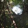 主郭と2郭の間の横堀を見上げる