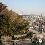 富士仙元から見た新横浜方面