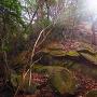 北西出郭の一枚巨岩