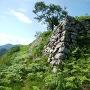 黒井城二の丸跡の石垣