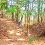 竪堀◆茶丸跡