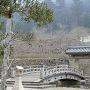 登城橋越しの西隅櫓