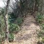 四ノ曲輪から東物見への土橋