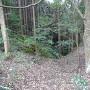 登城途中(茶畑付近)の竪堀