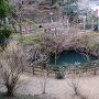 大炊の井戸