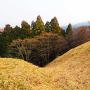 大堀切からの竪堀◆阿坂城