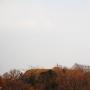 椎ノ木城から見る阿坂城