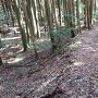 三瀬城 土橋①