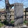 石碑と藤吉郎の馬柵