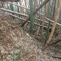 竹に埋まる堀切( ̄▽ ̄;)