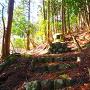 京極一族の墓