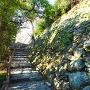 石垣(新裏坂)