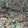 第三段 石垣