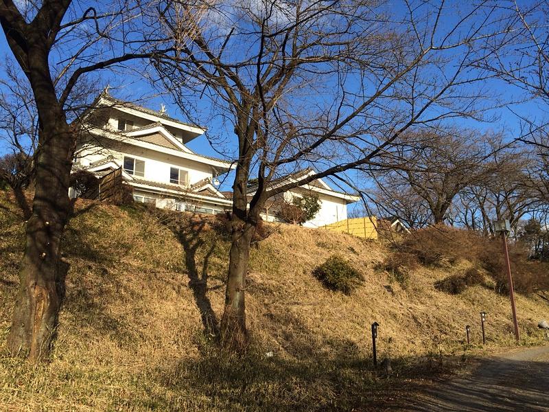 箱田城の写真:模擬天守の宿 | 攻城団