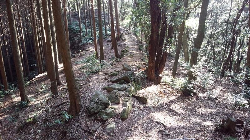 勝尾城の写真:勝尾城 主郭部 登...