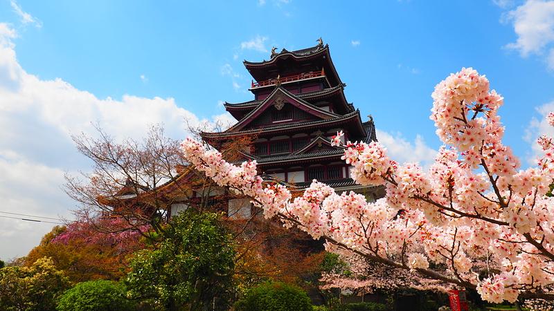 桜の咲く城址